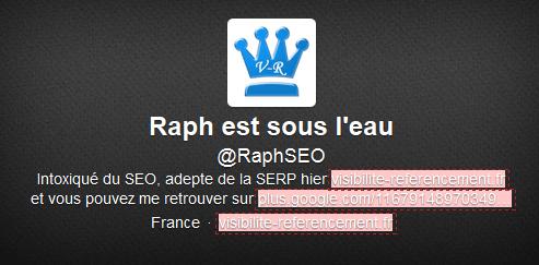 bio twitter raphseo